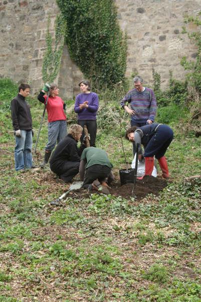 anjelina-jaap-eva-and-all-planting